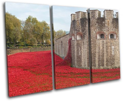 Tower of London Poppies City - 13-2358(00B)-TR32-LO